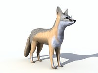 3d model swift fox