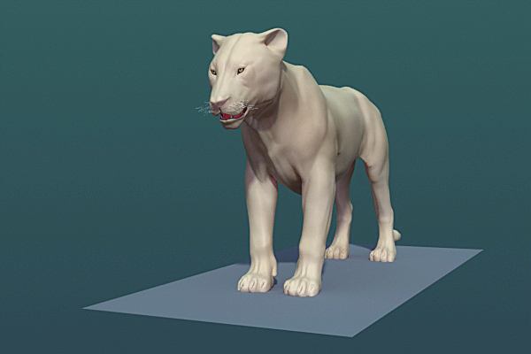 3d accurately muscles model