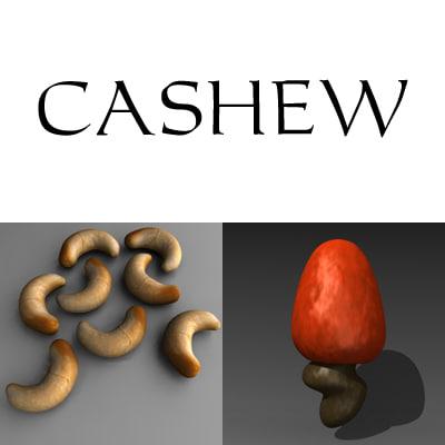 3d model cashew nut