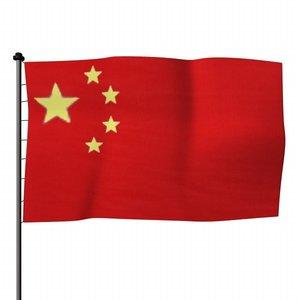 3d model flag china