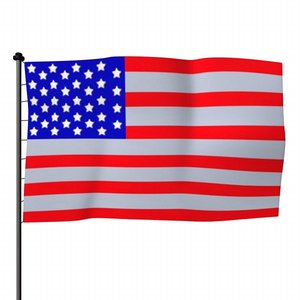 3ds max usa flag