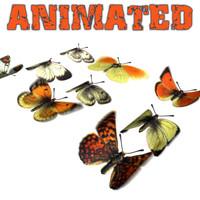 3d 9 butterflies