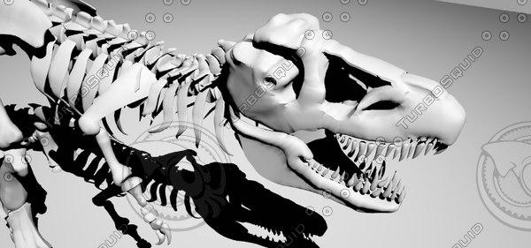 dinosaur 3d model