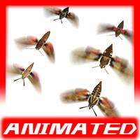 max 6 butterflies