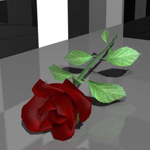 ma roses leaf backrounds