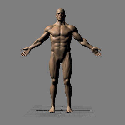 male character muscular 3d max