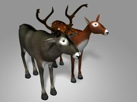 Low Poly Deer (Buck & Doe)