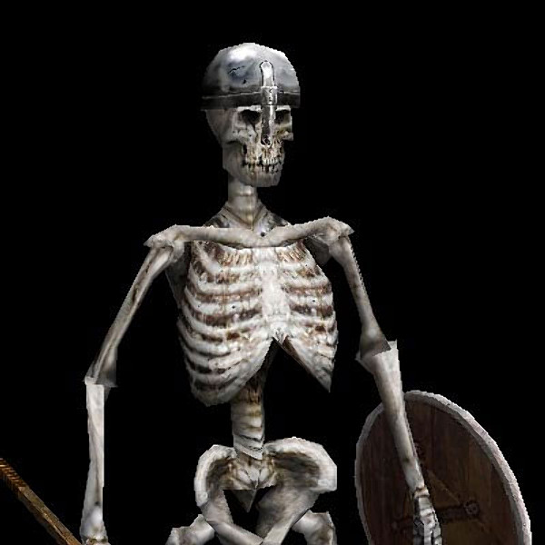 3d skeleton rigged