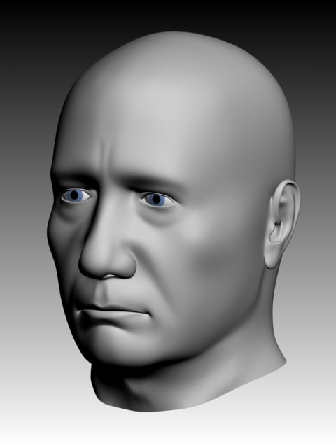 3d model realistic male character head