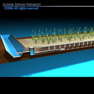 constructed wetland sewage treatment 3d model