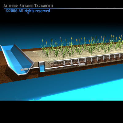 constructed wetland sewage treatment 3d model