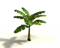 Banana_Tree_maya.zip