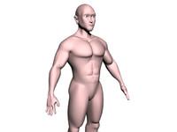 3d human male model