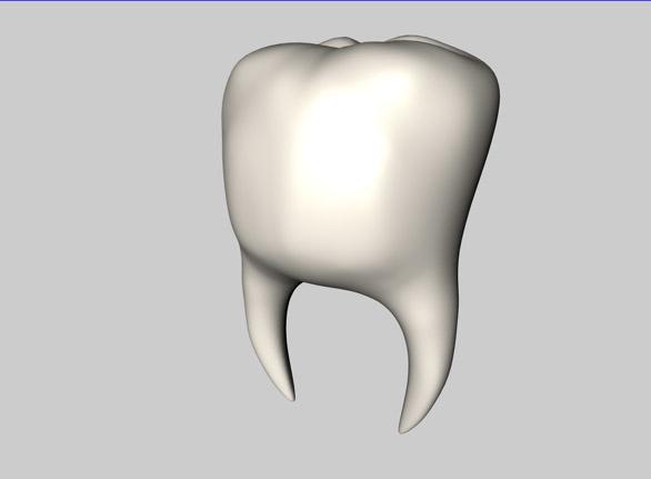 teeth 3d model