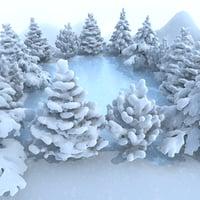 Winter Lake Conifer