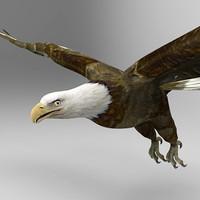 eagle bird 3d model