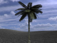 3d obj palm palmera