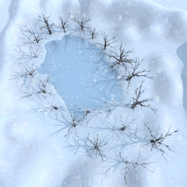 3d winter scene lake broadleaf model