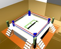 3d boxing ring
