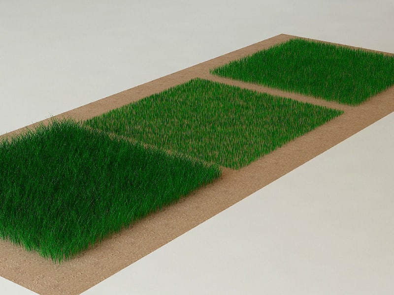 grass outdoor modelled 3d model