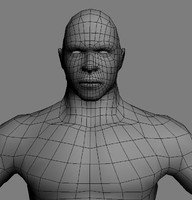 male base mesh 3d model