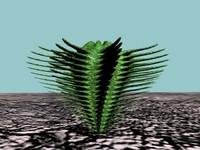 3d 10 cactuses model