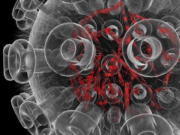 3d herpes virus