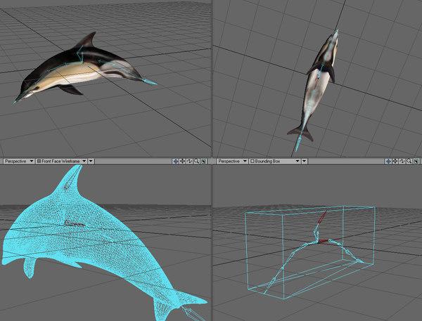 lightwave dolphin setup bones