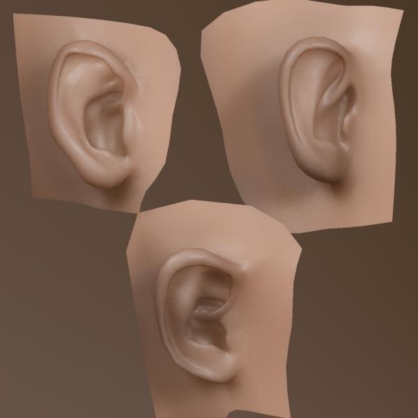 3d model ears people mind