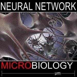 3dsmax neural network