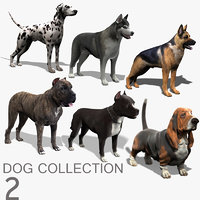 Dog Collection (2)