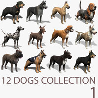 12 Dogs Collection (1)