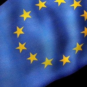 european flag 3d model