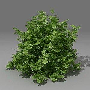 3d 3ds busch