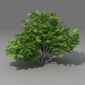 3ds max busch