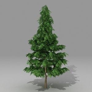 conifer tree 3d model