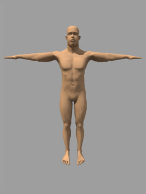human 3d ma