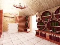 podval vine room 3d max