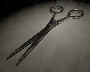 3ds scissors blade