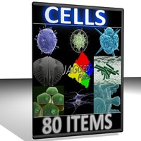 80 objects micro cell 3d model
