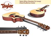 taylor 814ce 914ce guitar 3d model