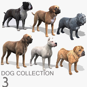 dog 3 bulldog mastiff 3d model