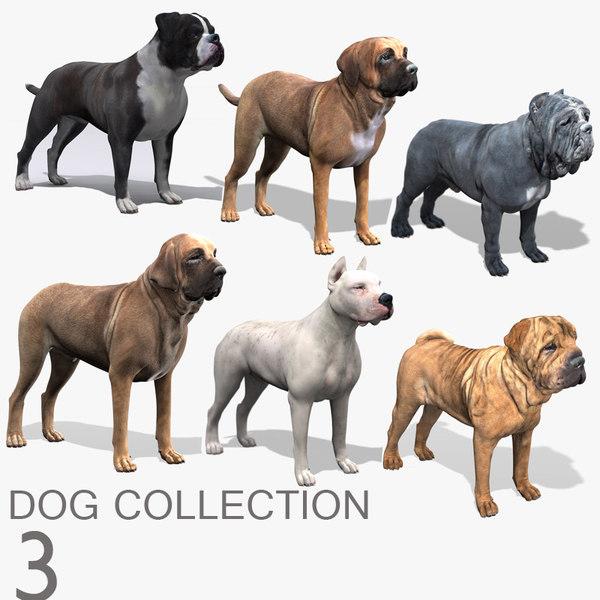 dog 3 bulldog mastiff 3d model
