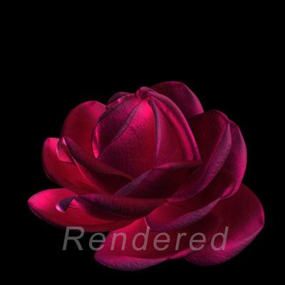 rose flower 3d obj