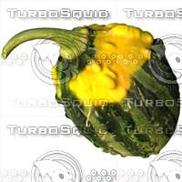 gourd 3d model