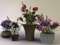 lightwave flower baskets