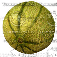 melon fruit 3d model