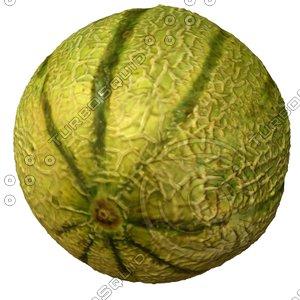 melon fruit 3d model