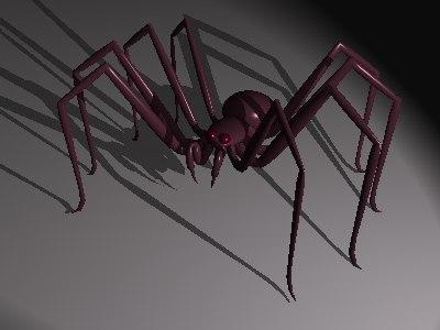 3d spider arachnid model