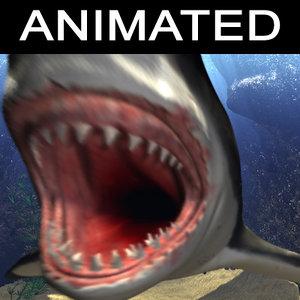 cinema4d white shark